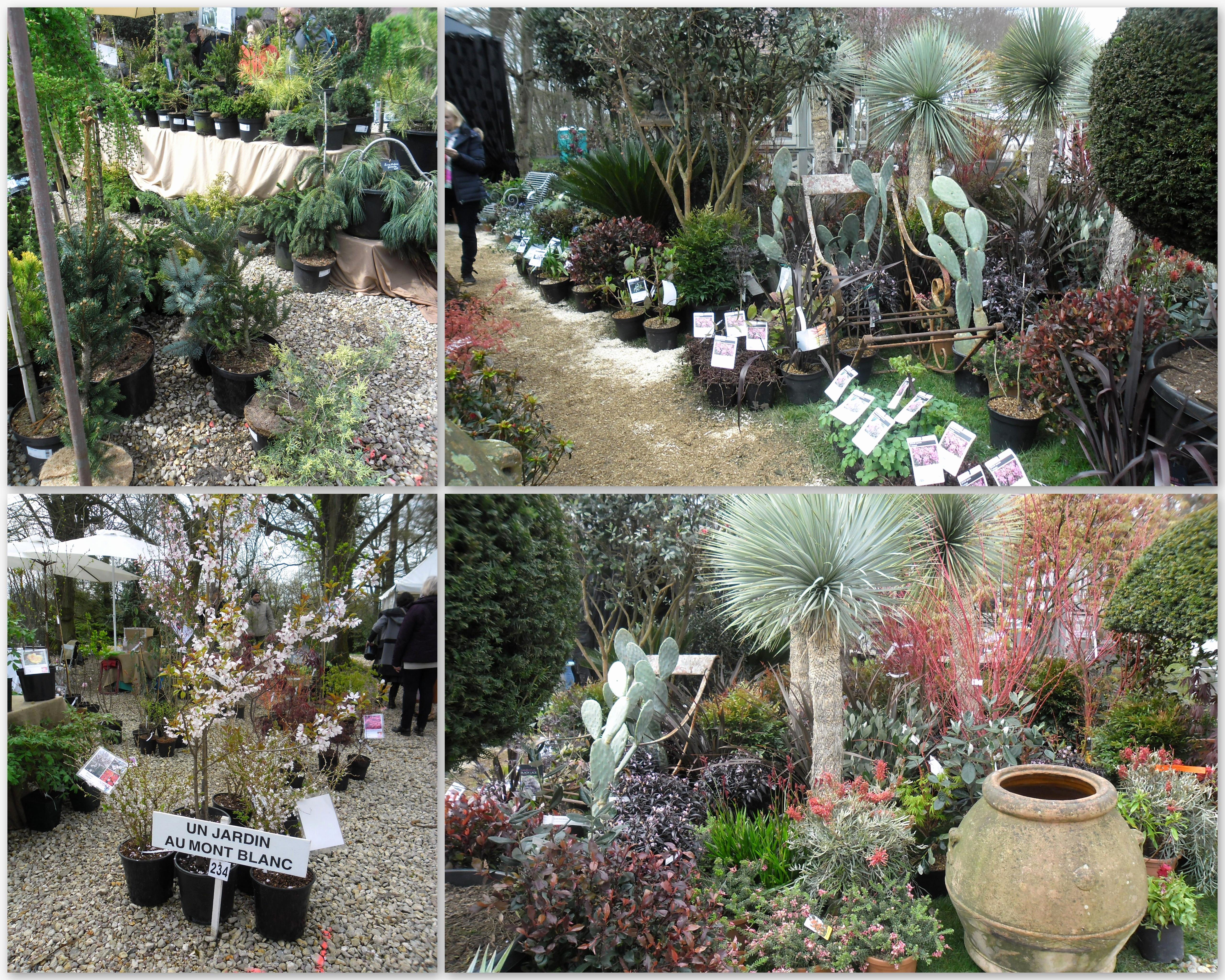 Abri De Jardin Occasion Pas Cher Impressionnant Image Meilleur De 40 De Abri De Jardin Castorama Conception