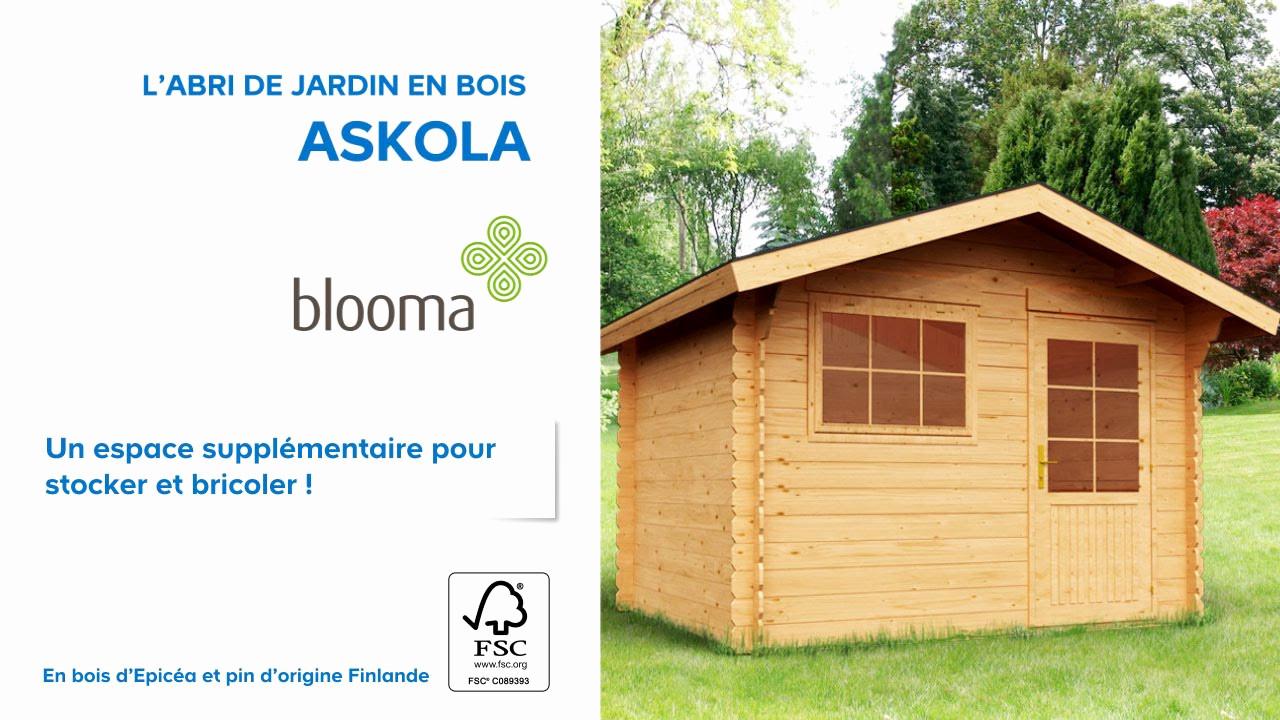 Abris Spa Pas Cher Élégant Collection Abri Jardin Bois Castorama De Brillant Abrit De Jardin En Bois Best