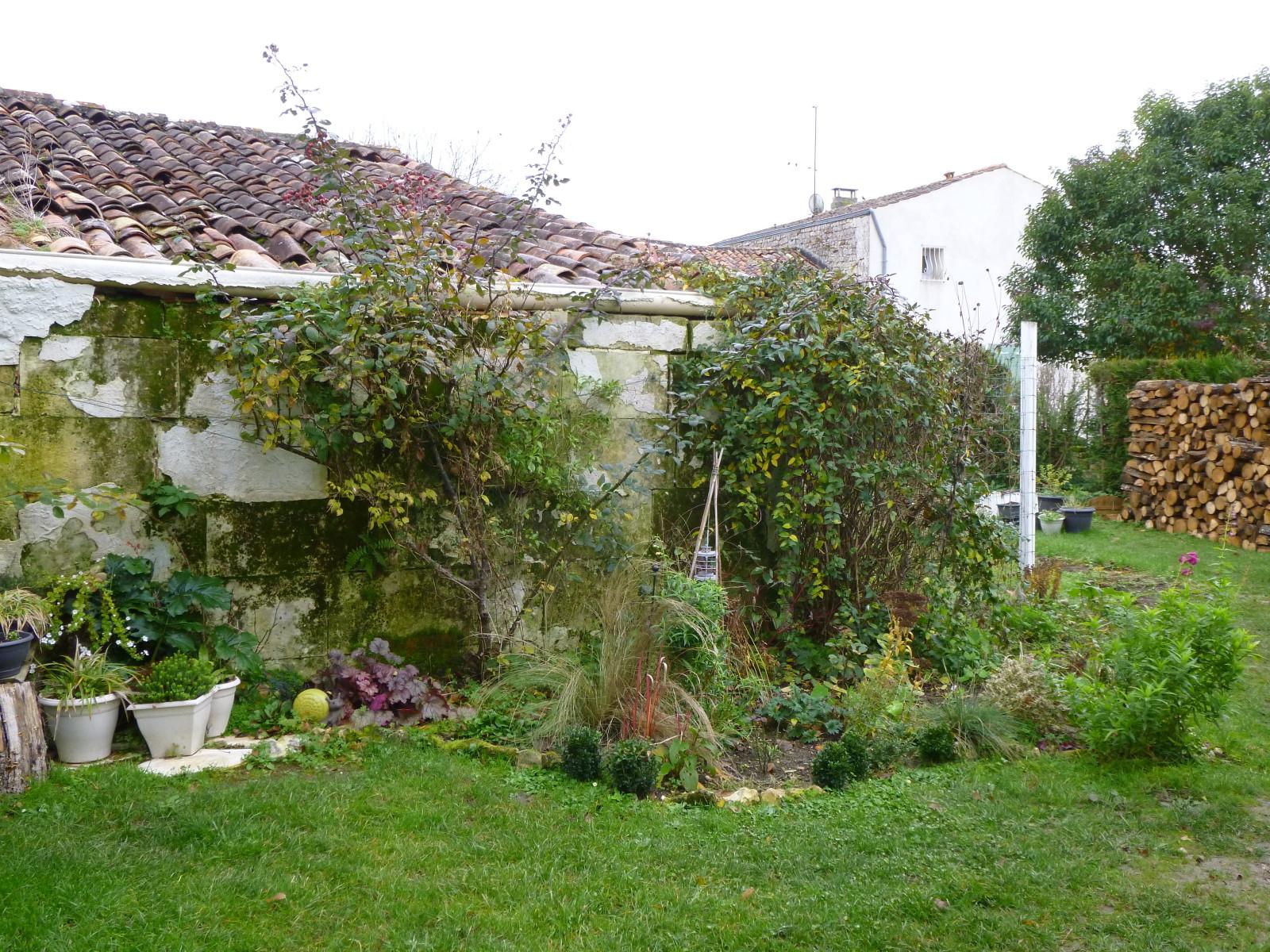 Arbre Aux Gentianes Jardiland Meilleur De Photos Cagouille S Garden Cagouille S Garden C Est Mon Petit Jardin