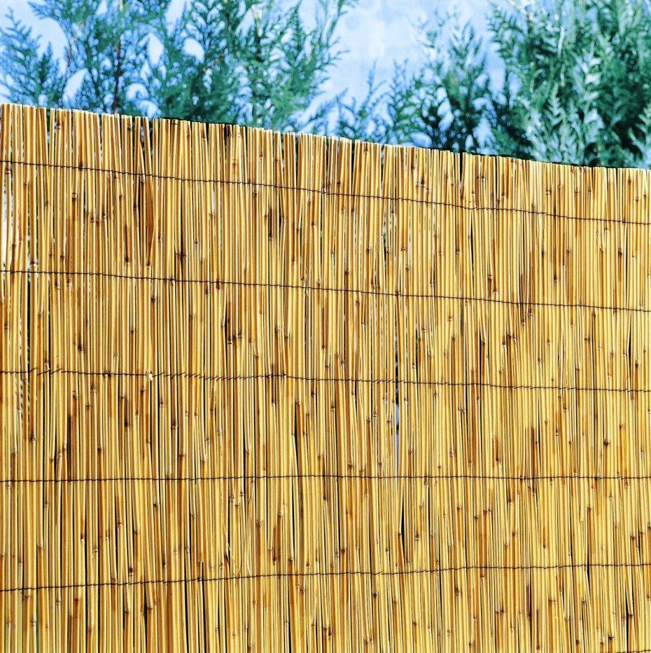 Barriere Jardin Castorama Meilleur De Stock Cloture Jardin Castorama Beau Awesome Cloture Jardin Roseau S