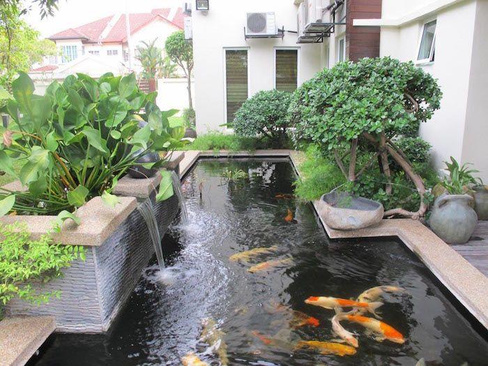 Bassin Jardin Moderne Beau Image La Carpe Koi Jardin Pinterest