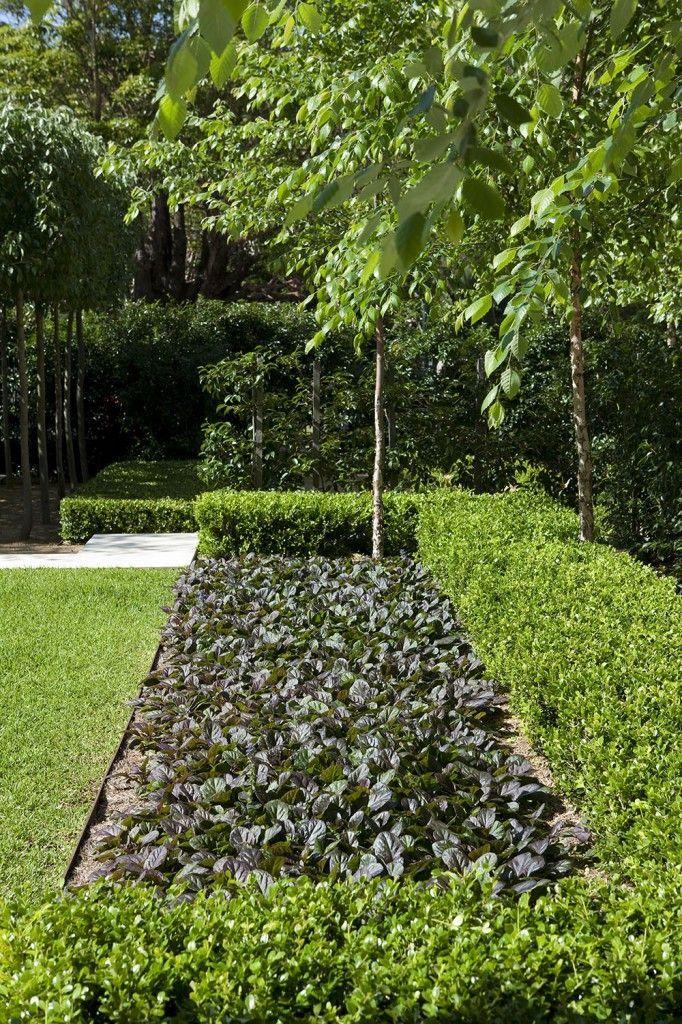 Bassin Jardin Moderne Frais Images Peter Fudge Gardens Garden Design Ideas