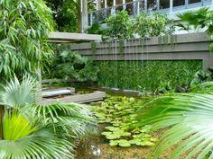 Bassin Jardin Moderne Impressionnant Collection Un Jardin Japonais Aux Portes De Lille