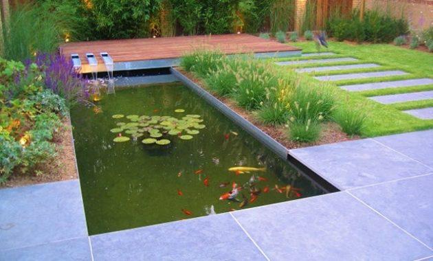 Bassin Jardin Moderne Impressionnant Photos Bassin De Jardin Finest ...