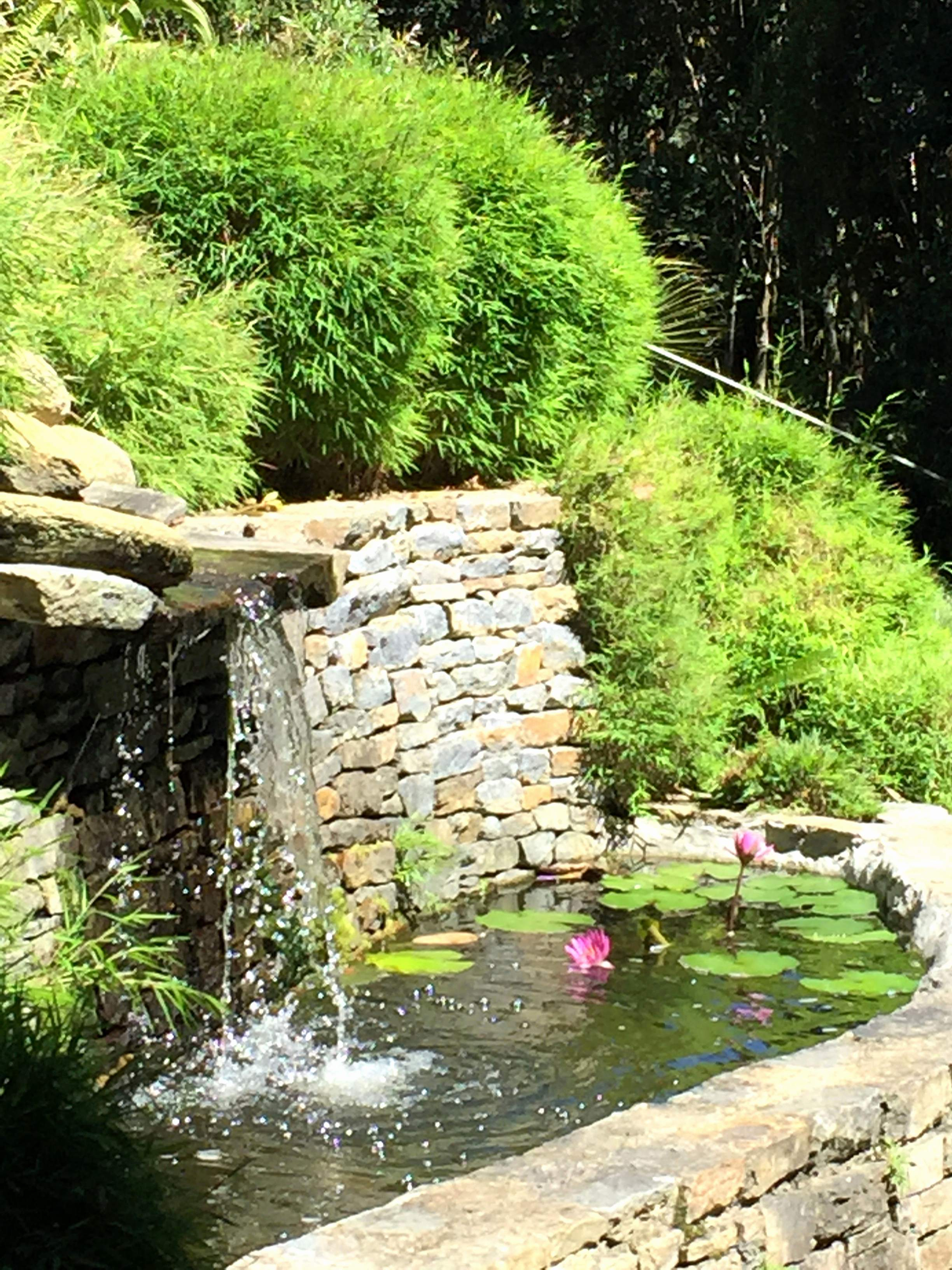 Bassin Jardin Moderne Inspirant Photos Deco Jardin Zen Nouveau Deco Bassin De Jardin Luxe Decoration Pour