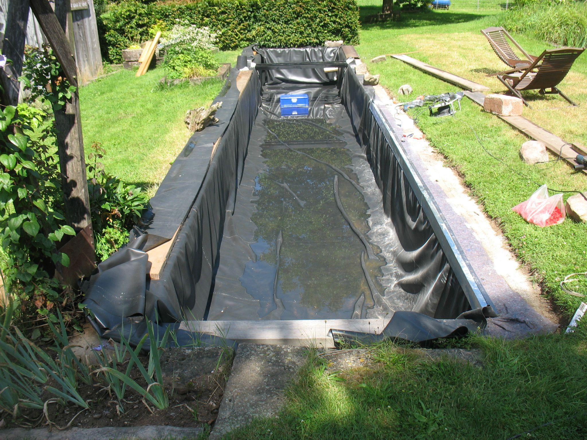 Bassin Jardin Moderne Luxe Photos La Plupart De Bien Bac A Poisson Jardin Idée – Sullivanmaxx