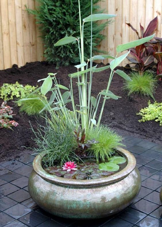 Bassin Jardin Moderne Meilleur De Photographie 15 Mini Jardins Zen  Réaliser D Urgence