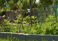 Bordure De Jardin En Pierre Pas Cher Beau Photographie Brique Bordure Jardin Inspirant Bordure De Jardin En Pierre De Cool