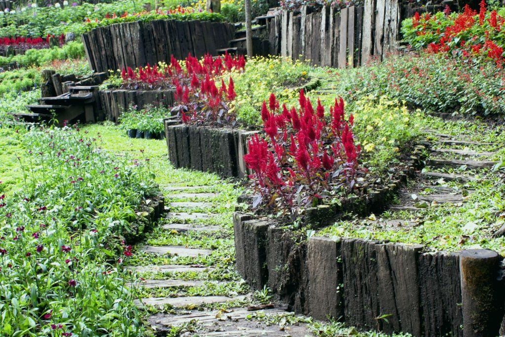 Bordure De Jardin En Pierre Pas Cher Impressionnant Collection Bordure Jardin Pierre Décorlamaison Bordure De Jardin Pas Cher