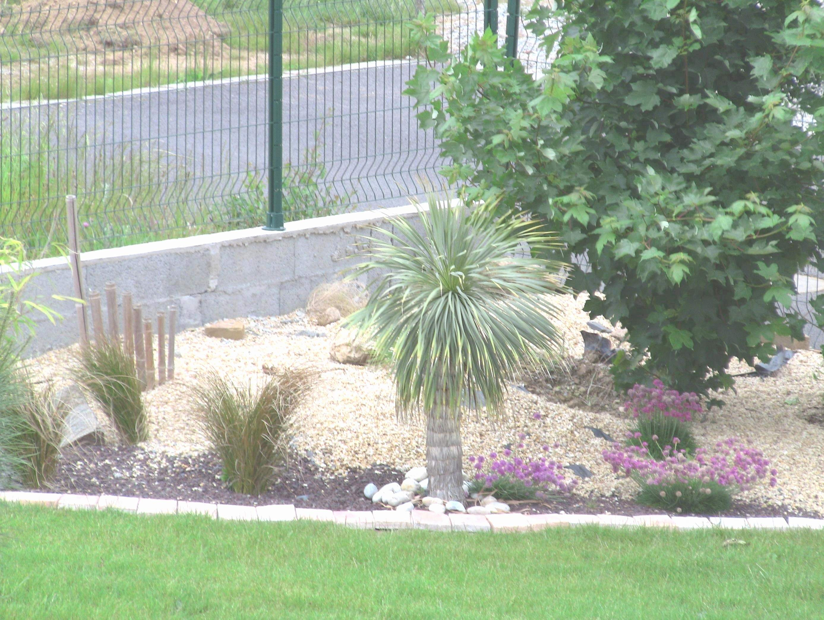 Bordure Jardin Moderne Impressionnant Photographie Amenagement Jardin Moderne Bordure De Jardin En Pierre De Cool