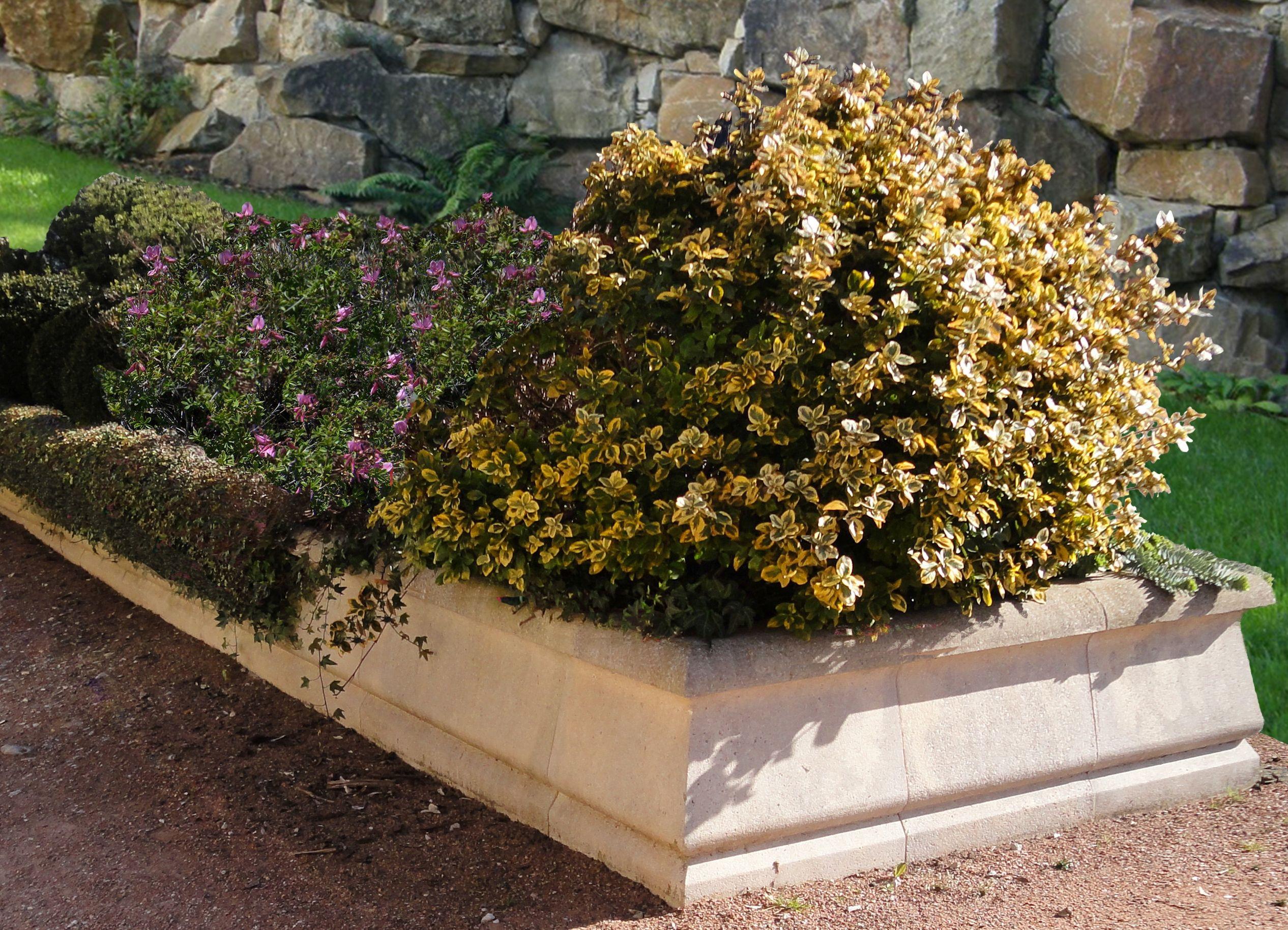 Bordure Modulable Brico Depot Luxe Galerie Bordures De Jardin En Beton Plus formidable Jardini¨re En Pierre