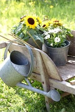 Brouette Deco Jardin Beau Collection épinglé Par Sarah Post Sur Garden Goodness Cont