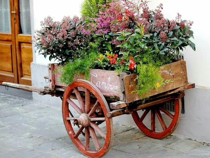 Brouette Deco Jardin Frais Photos épinglé Par Carmen Pemberton Sur Wheels In the Garden