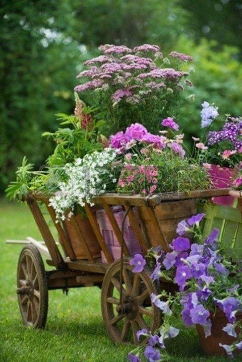 Brouette Deco Jardin Impressionnant Photographie épinglé Par K D Wildflowers Sur Gardening In Containers