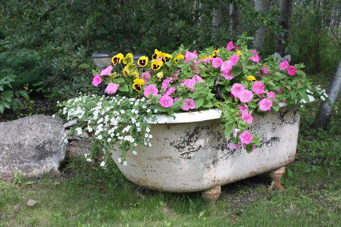 Brouette Deco Jardin Inspirant Photographie Jardim 05 700—466 Pixels Potted Floral Displays