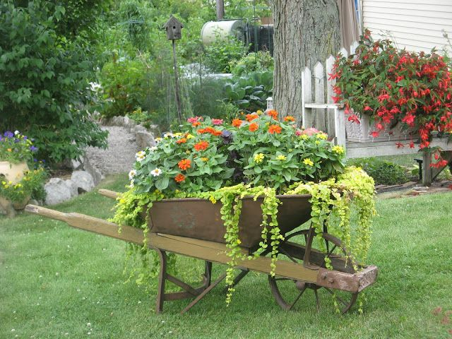 Brouette Deco Jardin Nouveau Photos Les 22 Meilleures Images Du Tableau Wheelbarrows Sur Pinterest