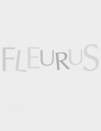 Calendrier Lunaire Aout 2016 Rustica Luxe Photographie Adaptation Films Séries Bd Roman Version Imprimable