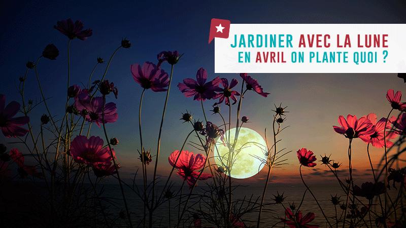 Calendrier Lunaire Rustica Avril 2017 Beau Photos Jardiner Avec La …
