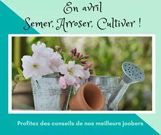 Calendrier Lunaire Rustica Avril 2017 Meilleur De Galerie La Serre En Avril