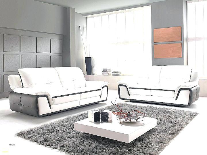Canape Angle Convertible Ikea Frais Images Canape Convertible Belgique – Akilisoftware