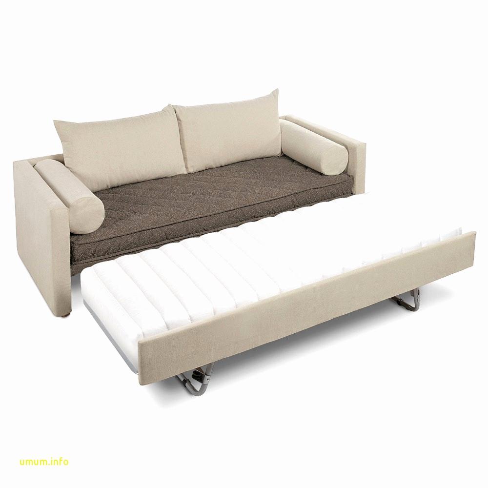 Canapé Convertible Rapido Ikea Meilleur De Image Canapé Lit Futon Cgisnur