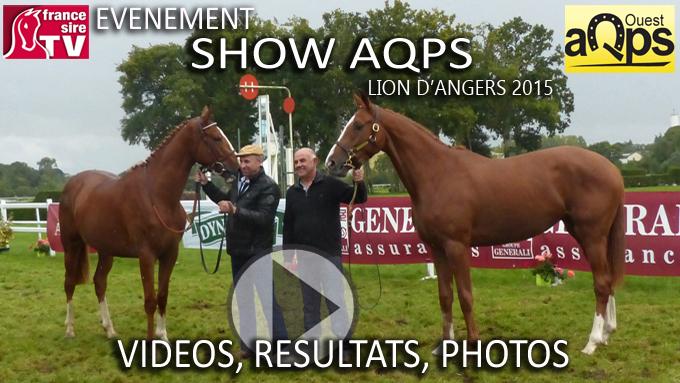 Canapé Déplimousse Ikea Beau Photos Show Aqps Du Lion 2015 Les Résultats Vidéos Et Photos De La