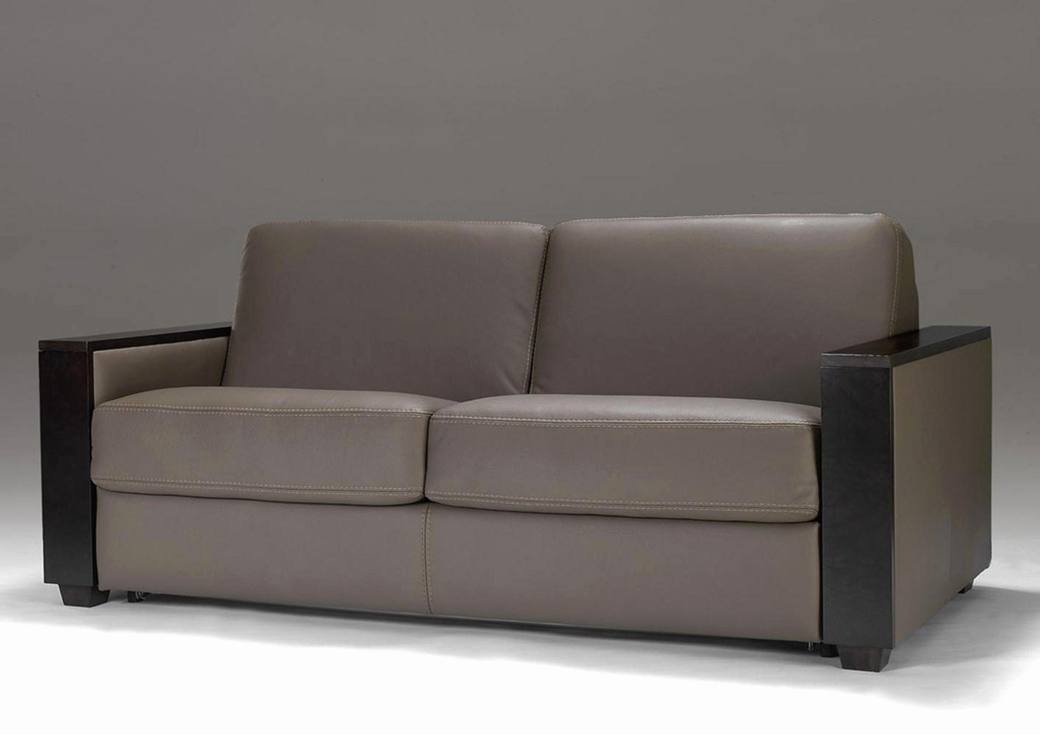 Canapé Rapido Ikea Luxe Images 32 Génial Image De Canapé Futon Convertible Intérieur De