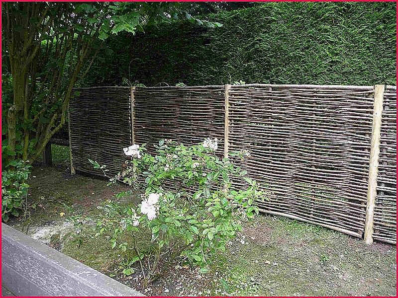 Cloture De Jardin originale Luxe Photos Idee De Cloture Exterieur Nouveau Cloture De Jardin originale