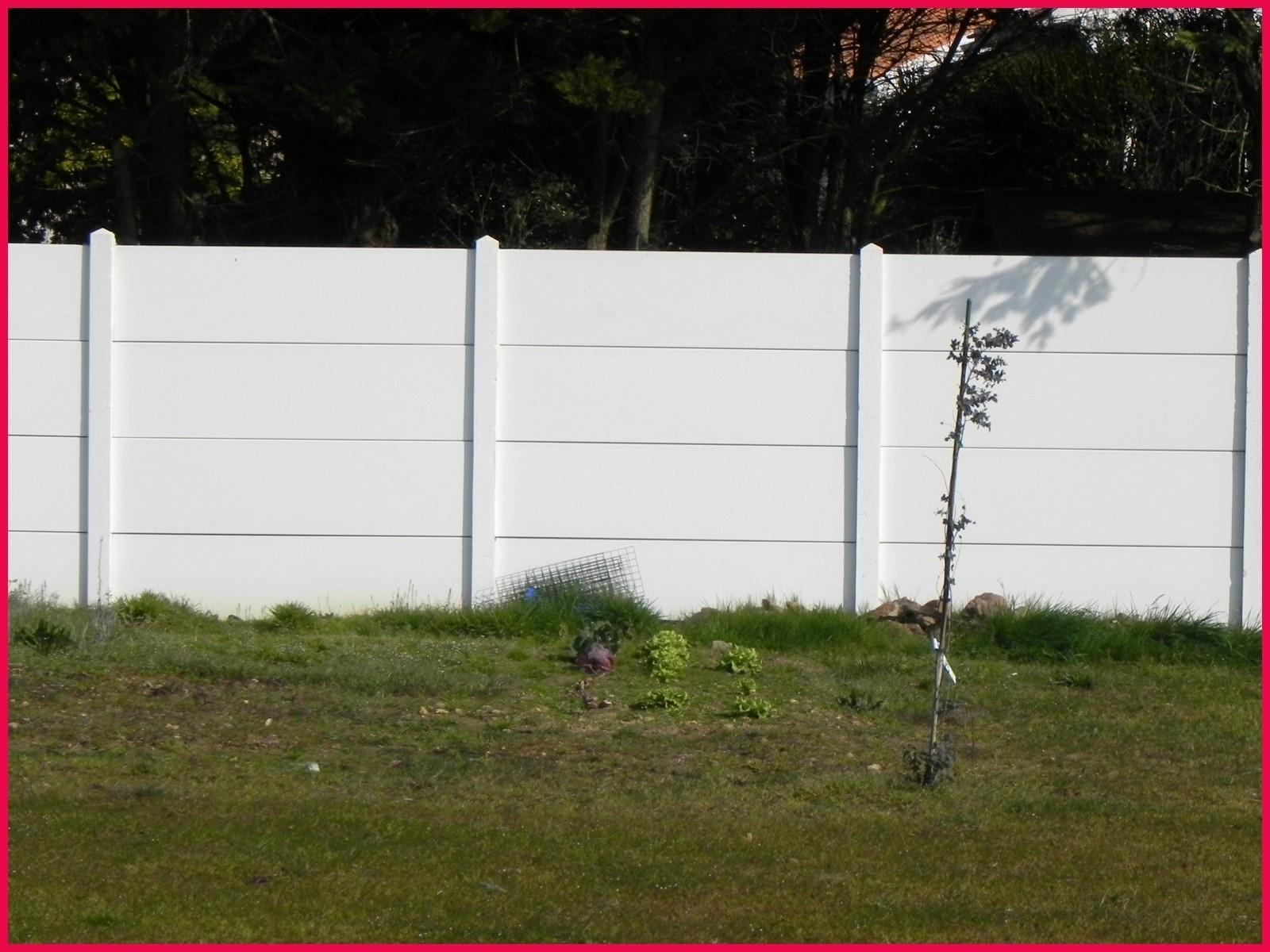 Cloture Jardin Leroy Merlin Impressionnant Images La Plus De Important Rangement Pour Jardin Projet – Sullivanmaxx
