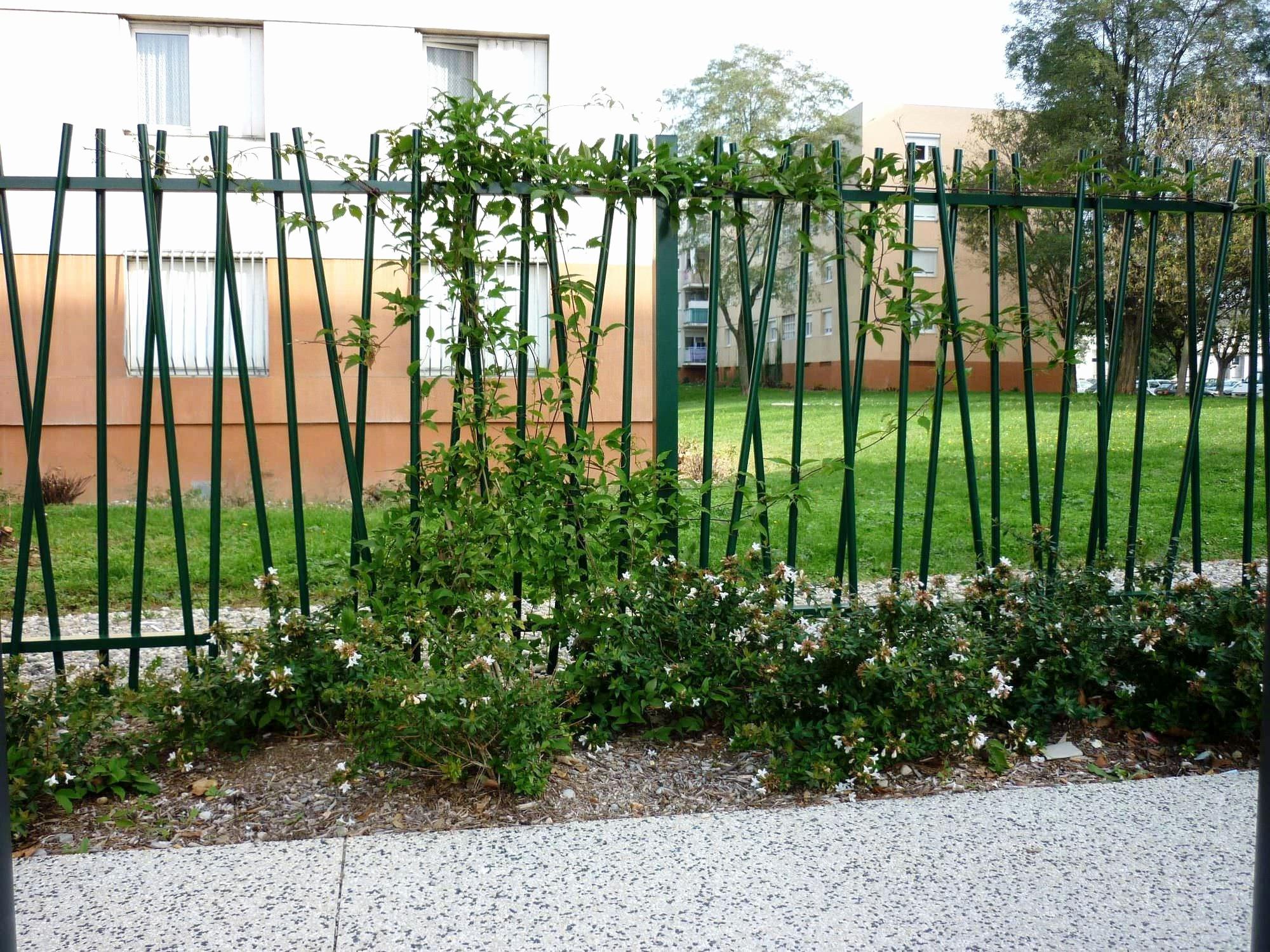 Cloture Moderne Pas Cher Frais Images Abri Jardin Bois Pas Cher De Luxe Moderne Cabane De Jardin originale