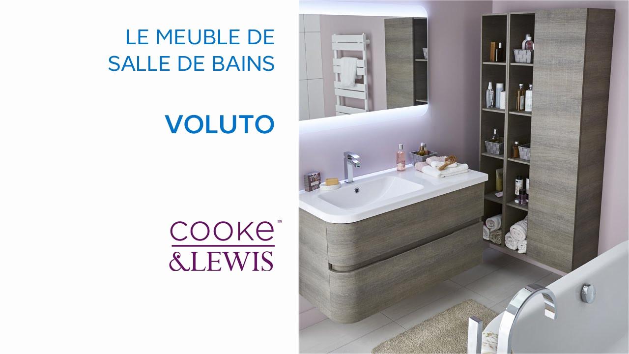 Colonne Castorama Salle Bain Beau Collection Meuble De 31 3d Lovely Accessoires Cuisine