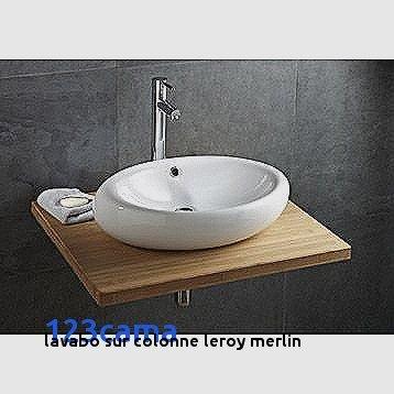 Colonne De Salle De Bain Leroy Merlin Beau Photos Lavabo Sur Colonne Leroy Merlin Stunning Salle De Bain Lavabo Dangle