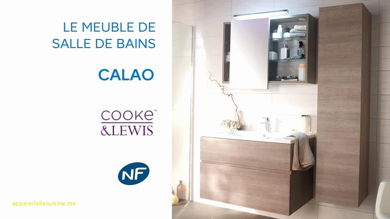 Colonne Salle De Bain Alinea Frais Photographie 46 Fra Che Meuble Salle De Bain Castorama Colonne Graphique