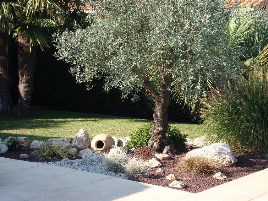 Deco Jardin Avec Piscine Beau Galerie Décoration Jardin Avec Olivier Jardin Pinterest