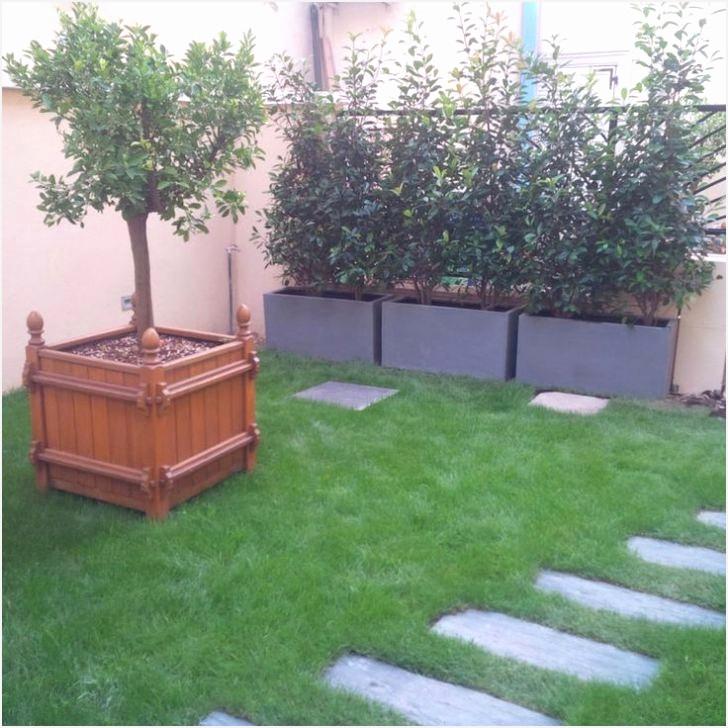 Deco Jardin Avec Piscine Élégant Images Petit Jardin Avec Piscine Designs attrayants Amenagement Petit