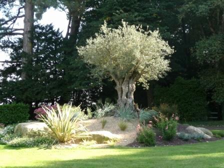 Deco Jardin Avec Piscine Frais Stock Decoration Piscine Luxe Petit Jardin Piscine Concept De La