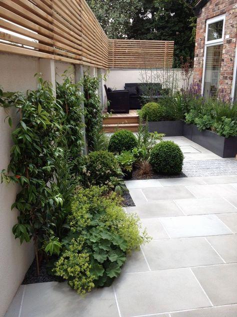 deco jardin avec piscine beau galerie d coration jardin avec olivier jardin pinterest. Black Bedroom Furniture Sets. Home Design Ideas