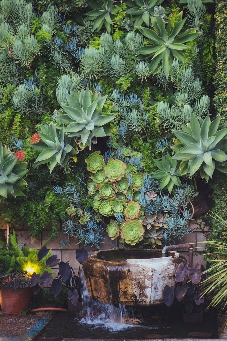 Deco Jardin Exotique Beau Photos Fucking Hell This is Amazing Green ish Pinterest