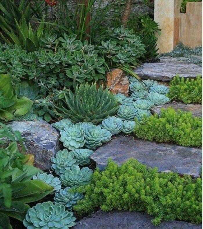 Deco Jardin Exotique Meilleur De Photos ▷1001 Idées Et Conseils Pour Aménager Une Rocaille Fleurie