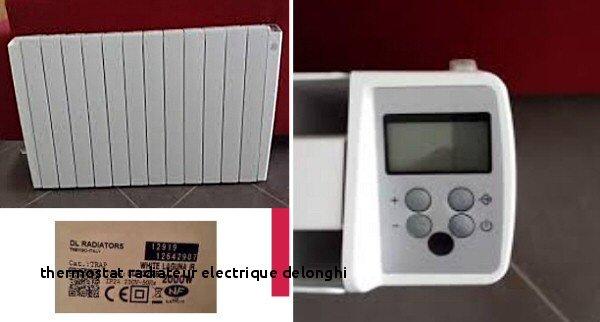 Delonghi Trd4 0820 Inspirant Stock 24 thermostat Radiateur Electrique Delonghi