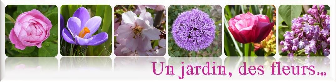 Derrière Les Murs De Mon Jardin Inspirant Collection Un Jardin Des Fleurs Juin 2014