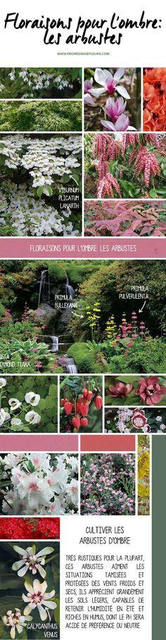 Derrière Les Murs De Mon Jardin Inspirant Photos Retrouvez Notre Jardini¨re Diy toute Simple Ici