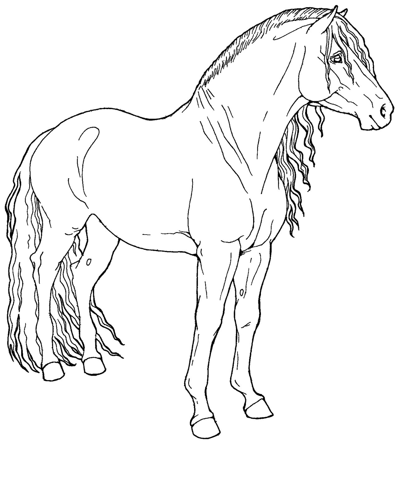 Coloriage Cheval Le Ranch.Dessin A Colorier Playmobil Beau Stock Luxe Coloriage A Imprimer Le