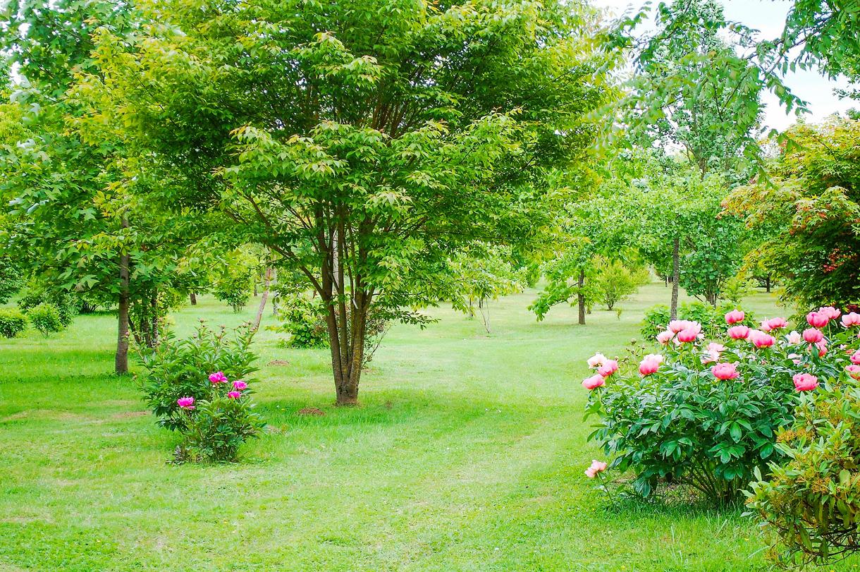 Emporte Piece Rectangulaire Gifi Beau Photos 10 Beaux Jardins Et Pépini¨res  Visiter Dans Le Berry