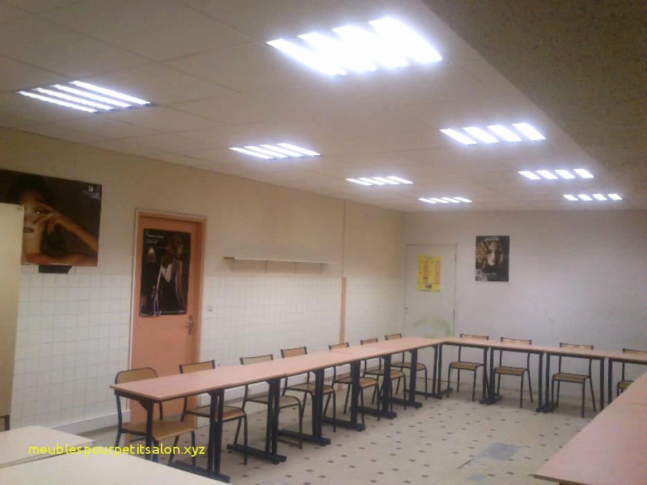 En Perdre son Lapin Inspirant Collection Résultat Supérieur Eclairage Bureau Unique Lampe Bureau Chevet