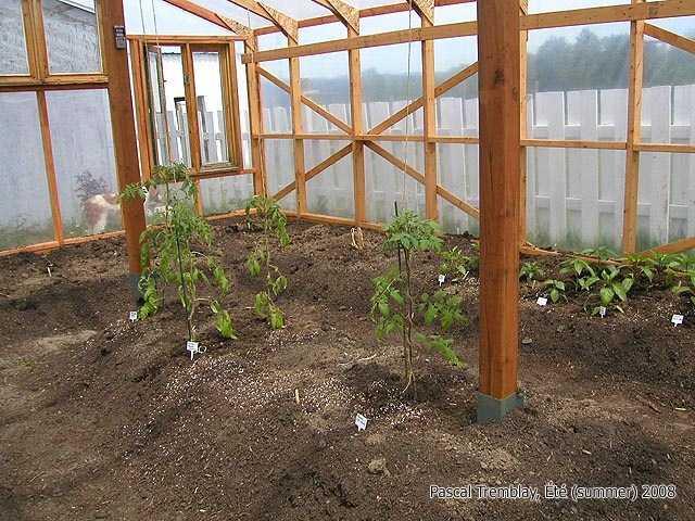 Fabriquer Serre De Jardin Polycarbonate Frais Photographie Fabriquer Serre De Jardin Polycarbonate Nouveau Fabriquer Serre De