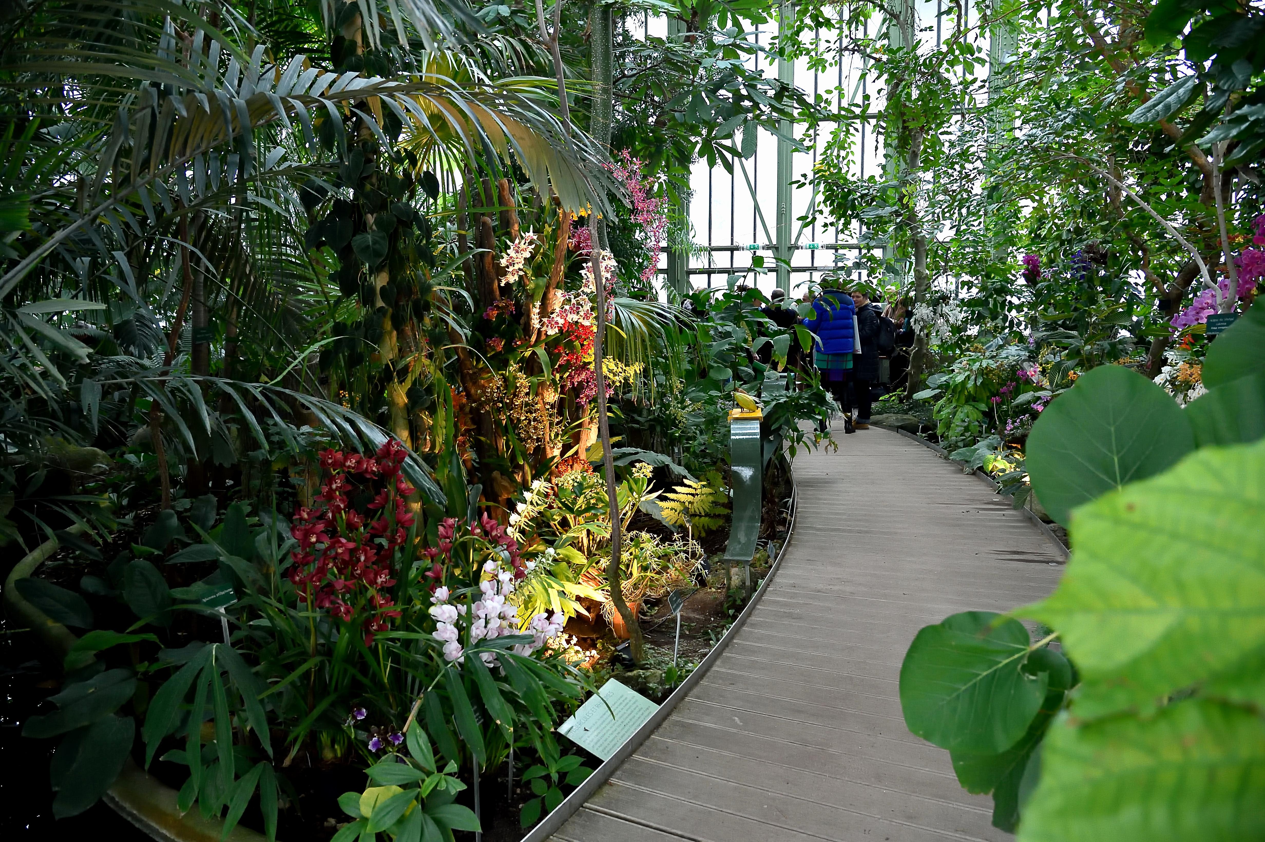 Fabriquer Serre De Jardin Polycarbonate Frais Photos 44 Beau S De Fabriquer Serre De Jardin Polycarbonate