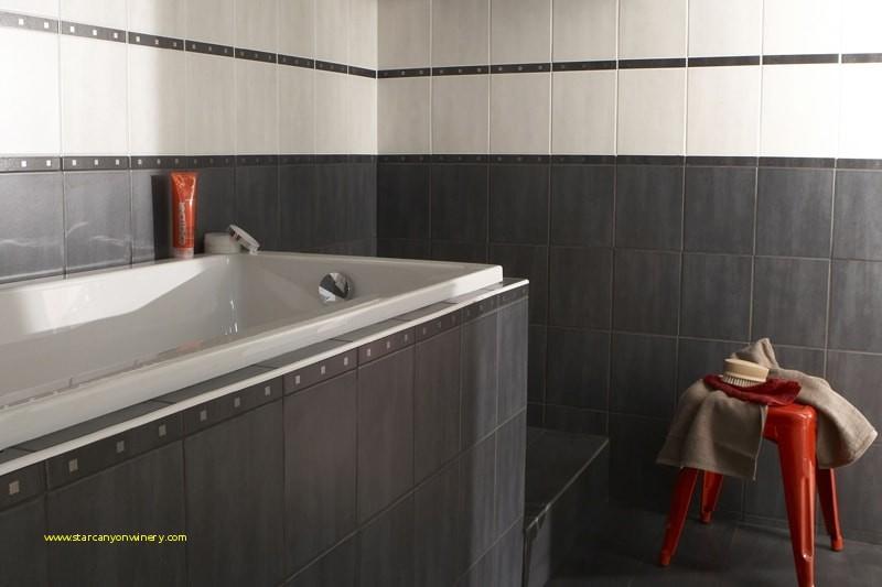 Faience Salle De Bain Castorama Impressionnant Photos Parquet Salle De Bain Castorama Lovely Inspirant Carrelage Marbre