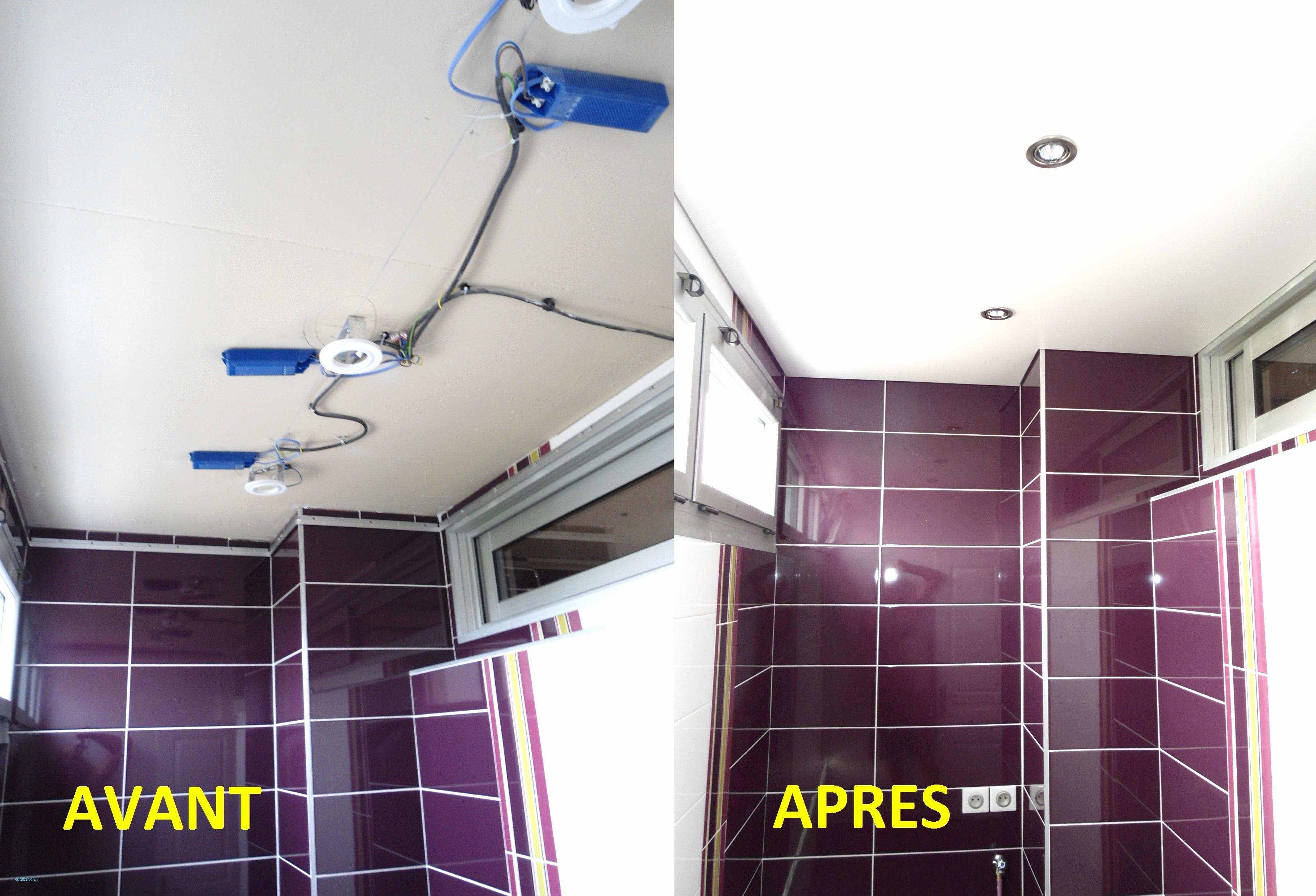 73 Beau Image De Faux Plafond Salle De Bain Pvc Sailkartingcom