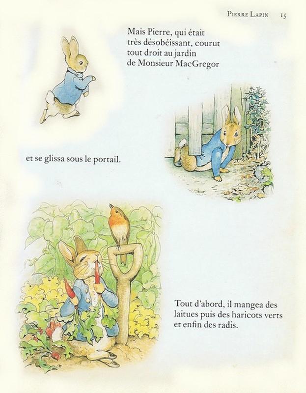 Haricots Verts Dessin Beau Photographie Les Lapins Dans Les Livres D Enfants
